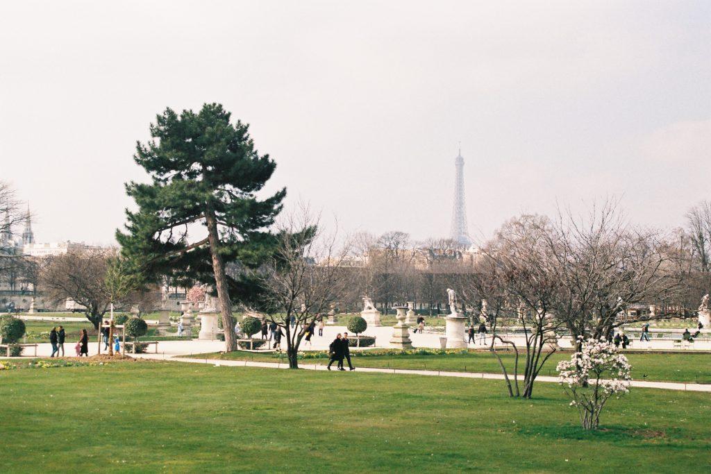 Jardin des Tuilleries - P1 2A